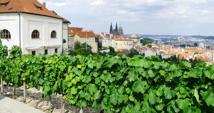 Откройте для себя Чешскую республику