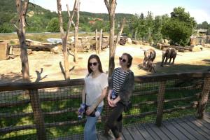 Пражский зоопарк - одно из самых посещаемых мест в Чехии